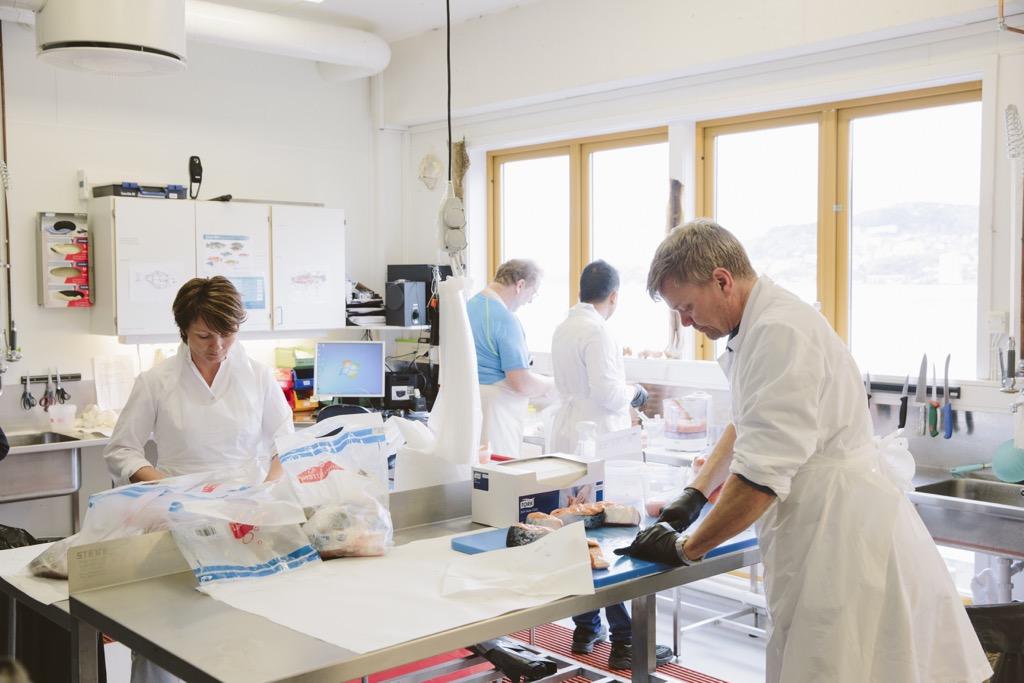 Laboruntersuchungen-bei-Nifes-in-Bergen