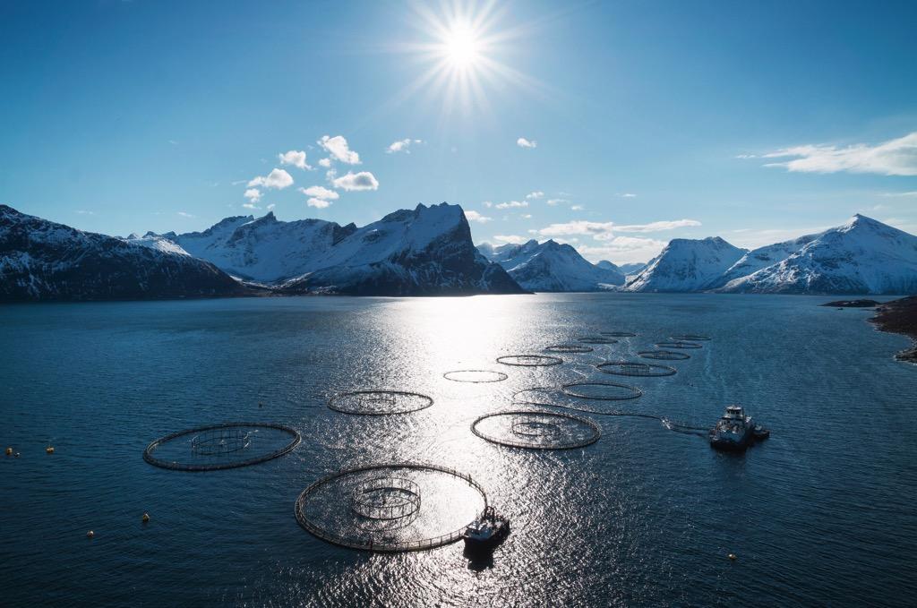 Norwegen-Aquakultur-Fjord-Bergen