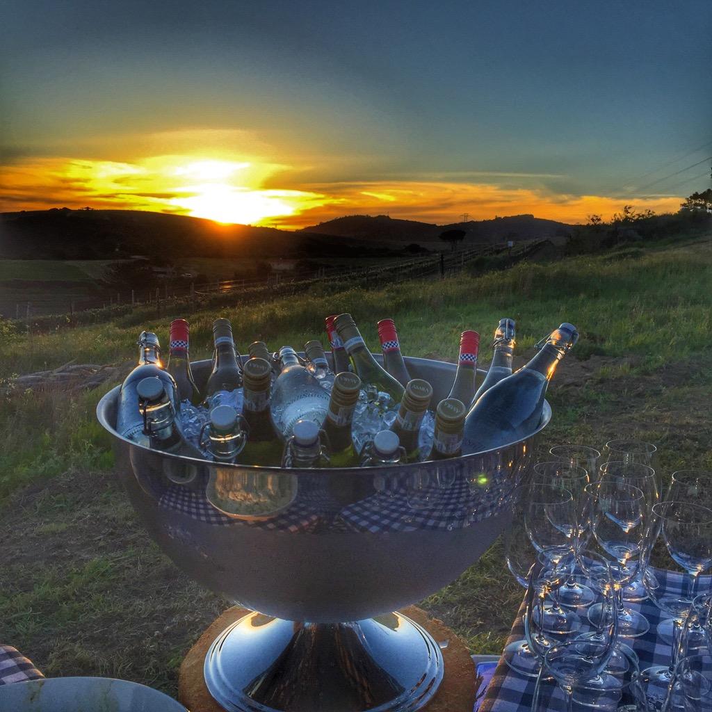 Südafrika-braai-wine-with-a-view