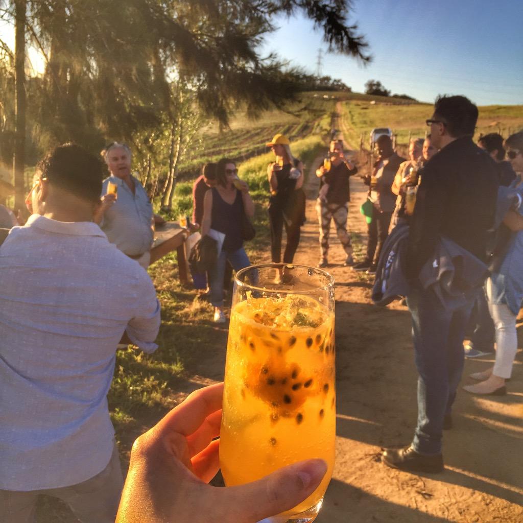 Stellenbosch-unsere-Gruppe