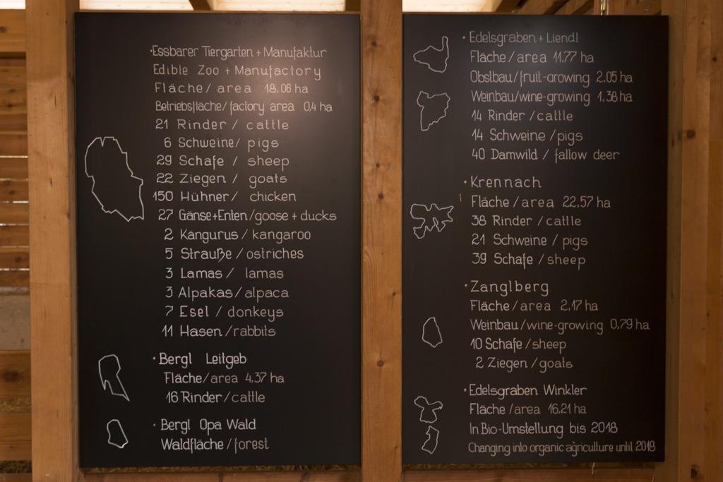 Steiermark-Zotter-Schokolade-Tiergarten-die-Tiere